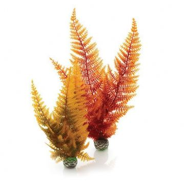 Biorb Aquatic Autumn Fern
